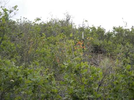 Zp-3-2 Oak Tree Drive #2 - Photo 16