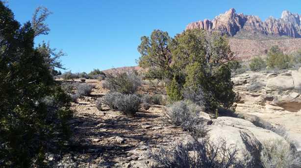 Apache Cir #34 - Photo 2