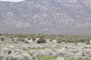 880 Acres Blue Mountain - Photo 13