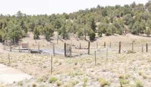 880 Acres Blue Mountain - Photo 57
