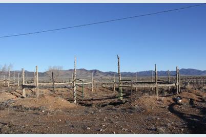 Hwy 56 & Antelope Rd. - Photo 1
