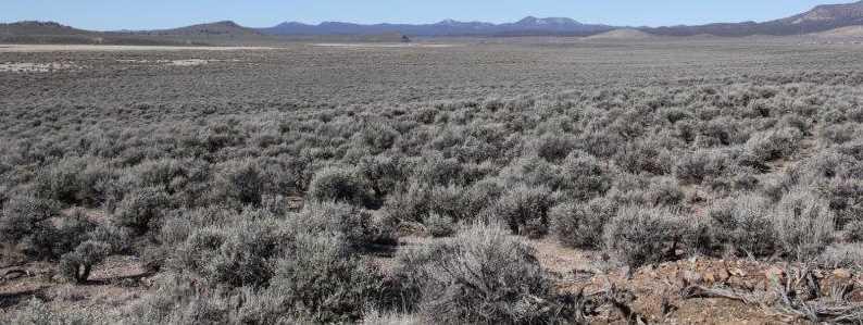 Hwy 56 & Antelope Rd. - Photo 17