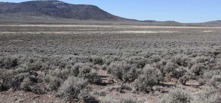 Hwy 56 & Antelope Rd. - Photo 15