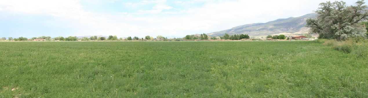 114.81 Acres - Photo 3
