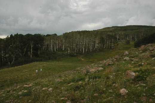 880 Ac Summit Mountain Rd - Photo 11