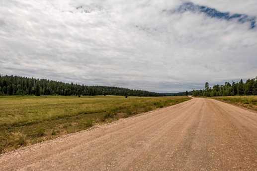 815 W Bear Track - Photo 13