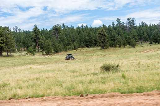 815 W Bear Track - Photo 45