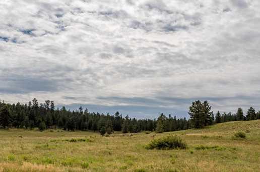 815 W Bear Track - Photo 11