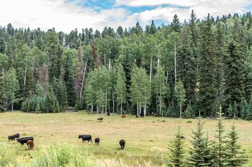 815 W Bear Track - Photo 51