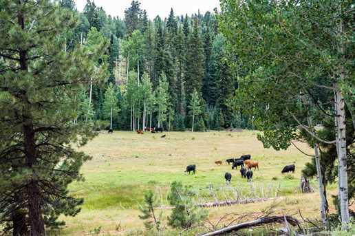 815 W Bear Track - Photo 9