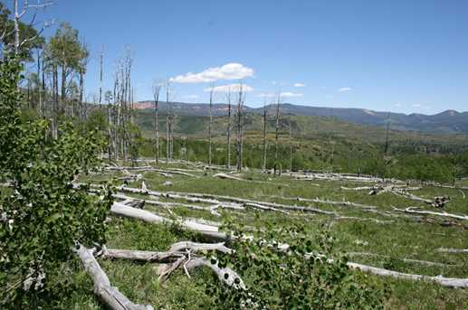 Miner's Peak Road - Photo 5