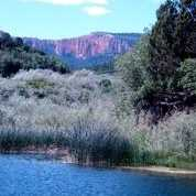 Hidden Canyon Rd #223 - Photo 7