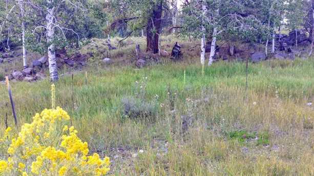 1000 W Clear Creek Canyon Rd #10 - Photo 3