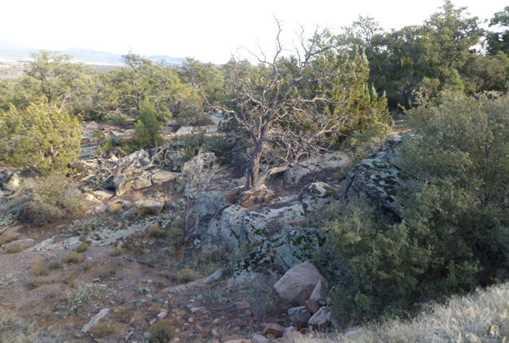 Lots 58 59 60 Pinion Hills - Photo 11