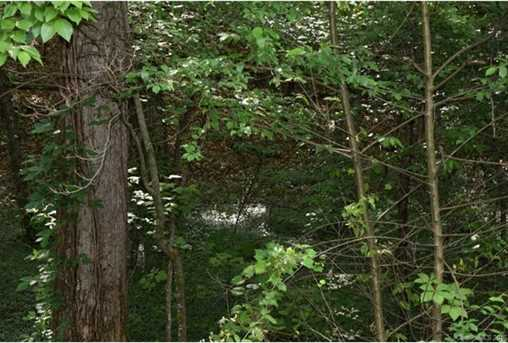 25 Acres South Fork Road - Photo 3