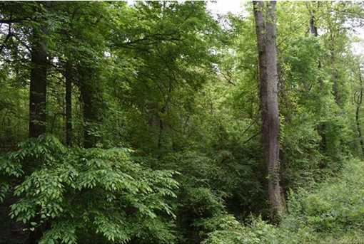 25 Acres South Fork Road - Photo 5