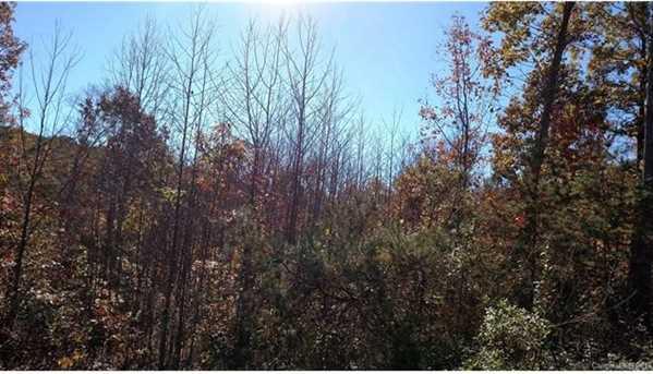 Lots 1, 4, 6 Deer Creek Trail #1,4, & 6 - Photo 17