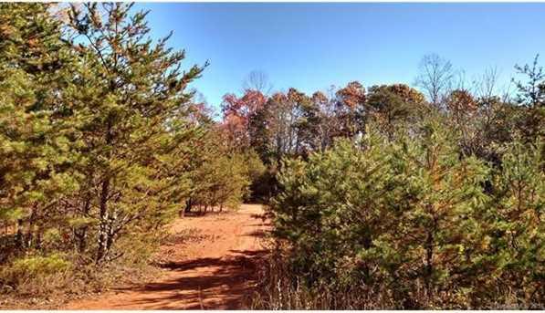 Lots 1, 4, 6 Deer Creek Trail #1,4, & 6 - Photo 7