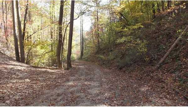 6.38 Acres Wooded Mountain Trail - Photo 5
