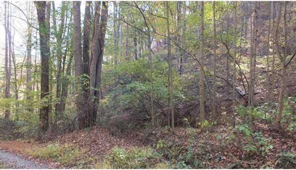 6.38 Acres Wooded Mountain Trail - Photo 9