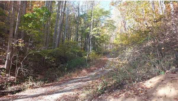 6.38 Acres Wooded Mountain Trail - Photo 3