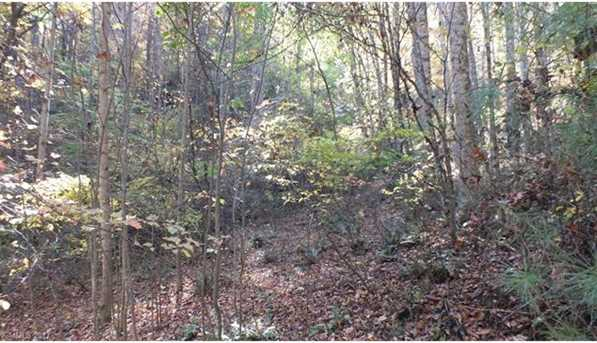6.38 Acres Wooded Mountain Trail - Photo 7