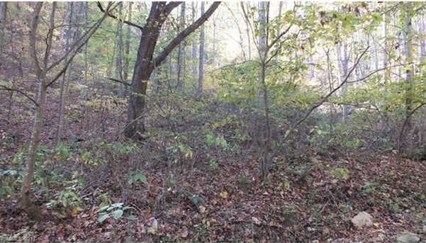 6.38 Acres Wooded Mountain Trail - Photo 11