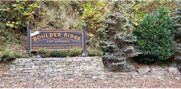 Lot 8 Big Boulder Ridge Road - Photo 19