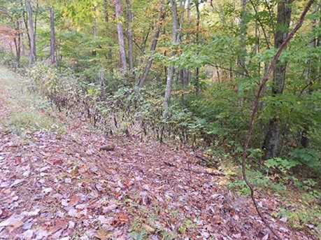 00 Coon Creek Road #28 - Photo 5