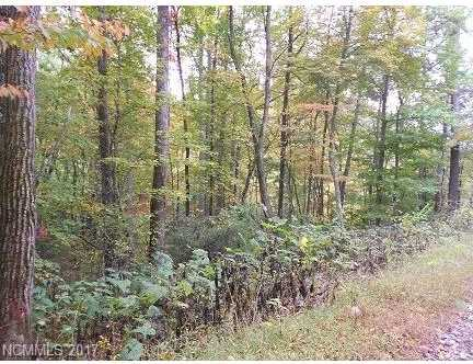00 Coon Creek Road #28 - Photo 3