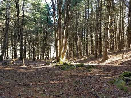 87.23 Acres Off Scronce Creek Road - Photo 13