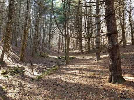 87.23 Acres Off Scronce Creek Road - Photo 11