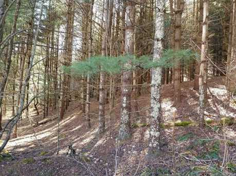 87.23 Acres Off Scronce Creek Road - Photo 5