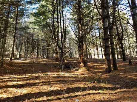 87.23 Acres Off Scronce Creek Road - Photo 23