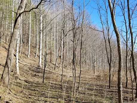 87.23 Acres Off Scronce Creek Road - Photo 29