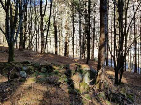 87.23 Acres Off Scronce Creek Road - Photo 7