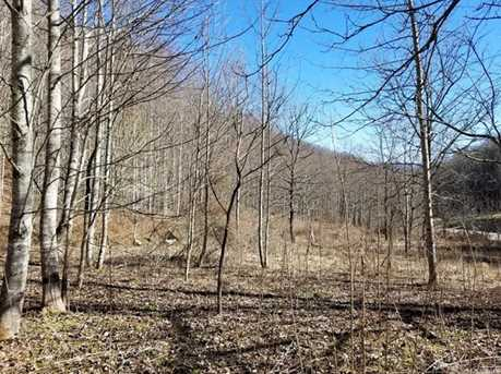 21.23 Acres Off Scronce Creek Road - Photo 3