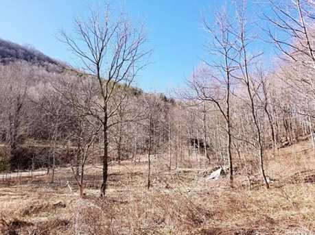 21.23 Acres Off Scronce Creek Road - Photo 23