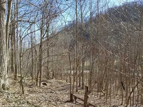 21.23 Acres Off Scronce Creek Road - Photo 15