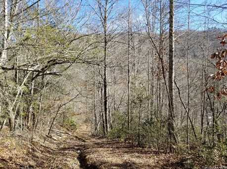 92 99 Acres Off Brush Creek Rd - Photo 21