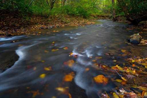 154 Wandering Oaks Way #84 - Photo 9