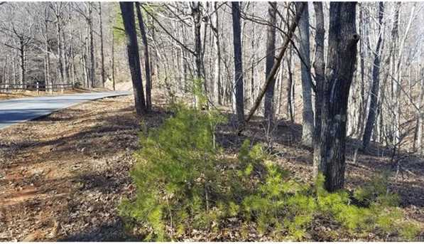 000 White Oak Mountain Road - Photo 3