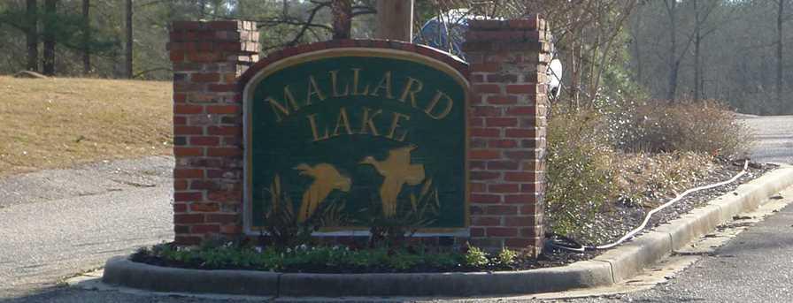 170 Lake Mallard Lane - Photo 1
