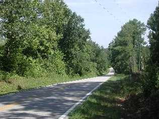 Tbd Syrup Mill Road - Photo 17