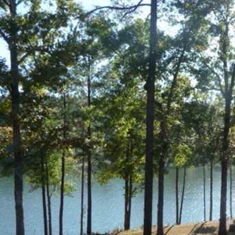 558 Forest Bluffs - Photo 3