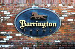 Lot 4-6 Barrington Farms Drive - Photo 1