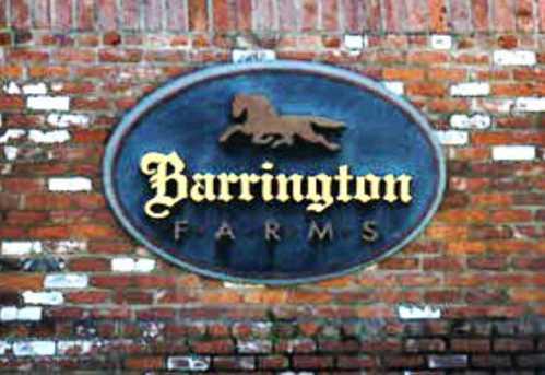 Lot 10-1 Barrington Farms Drive - Photo 1