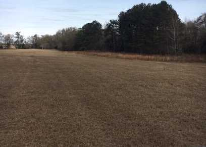 0 Wagener Road / Hwy 302 - Photo 3