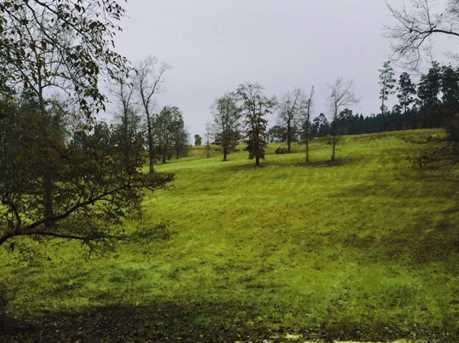 16 Acres Bluffwood Road - Photo 2