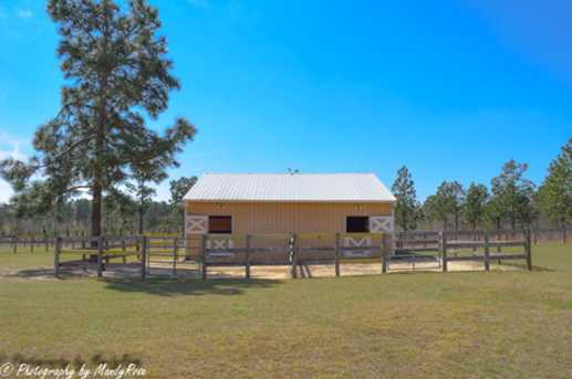 176 Boggy Gut Rd - Photo 5